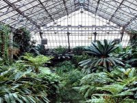 greenhouse and hothouse